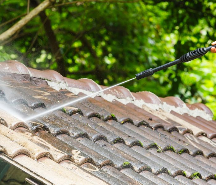 performing roof cleaning in Lincoln Park